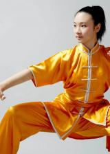 Tai Chi Peking-Form